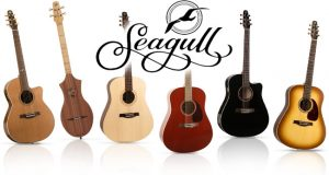 Best Seagull Guitars Reviews